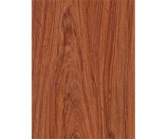 木纹彩涂钢板WF-WOODM10